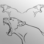 Puma coppia - 70x22cm