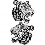 Tigre coppia - 32x60 cm