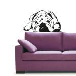Bulldog 86x50 cm