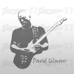 David Gilmour - Murale adesivo 50x50 cm